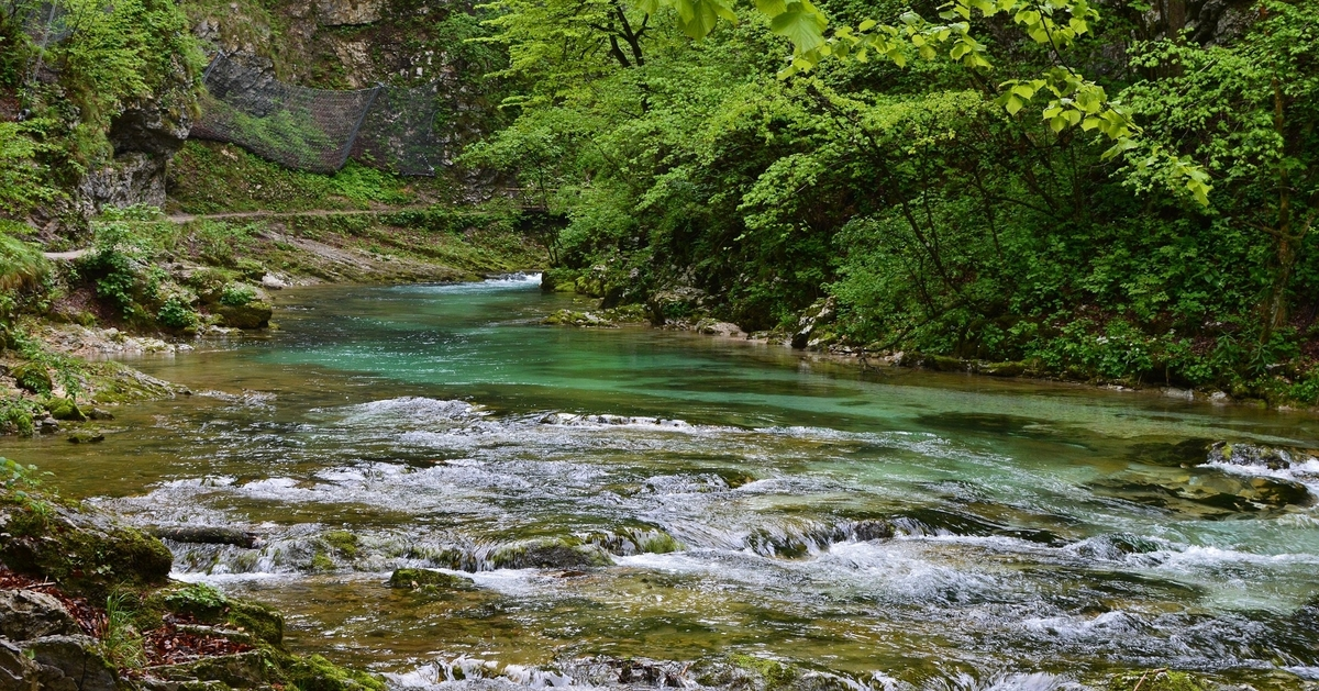 gorges vintgar - slovénie