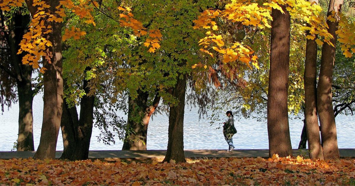 Parc Herăstrău