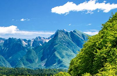 Réceptif Slovénie, Cap Vers l'Est, Réceptif groupe Slovénie